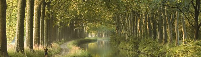 Woman running along a river surrounded by big trees, near the city of Toulouse, France