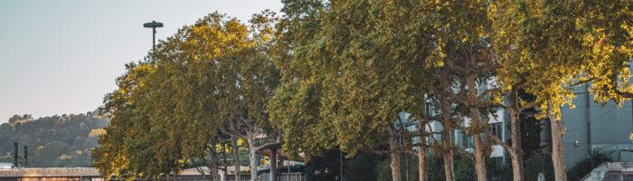 Lyon septiembre 2019 (11)